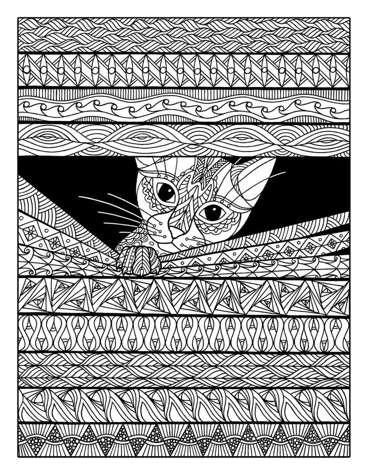 Cat Coloring Pages For Adults 19