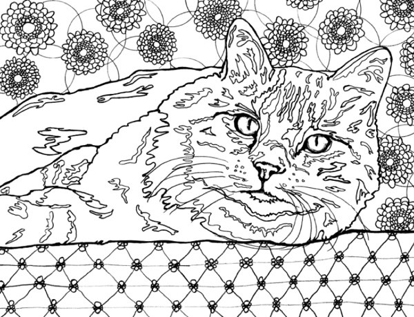 Cat Coloring Pages For Adults 31