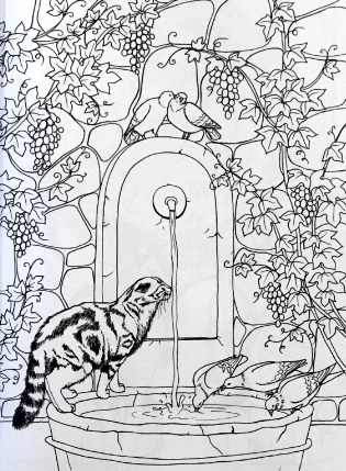 Cat Coloring Pages For Adults 34