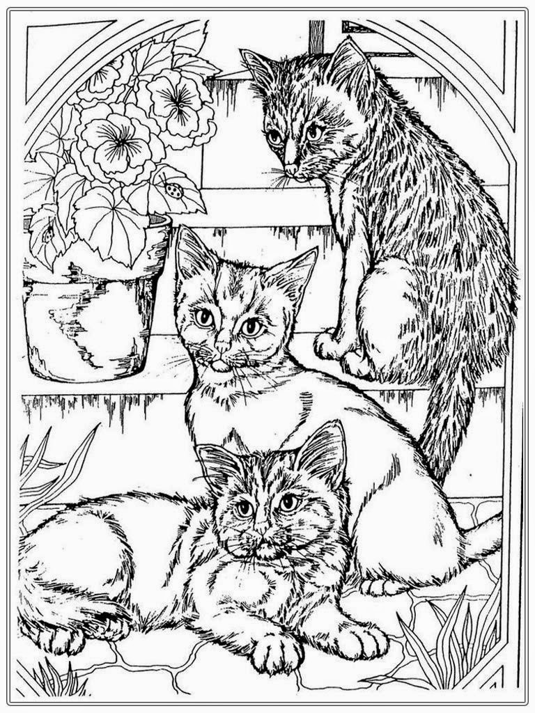 Cat Coloring Pages For Adults - Part 4