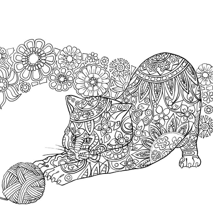 Cat Coloring Pages For Adults 39