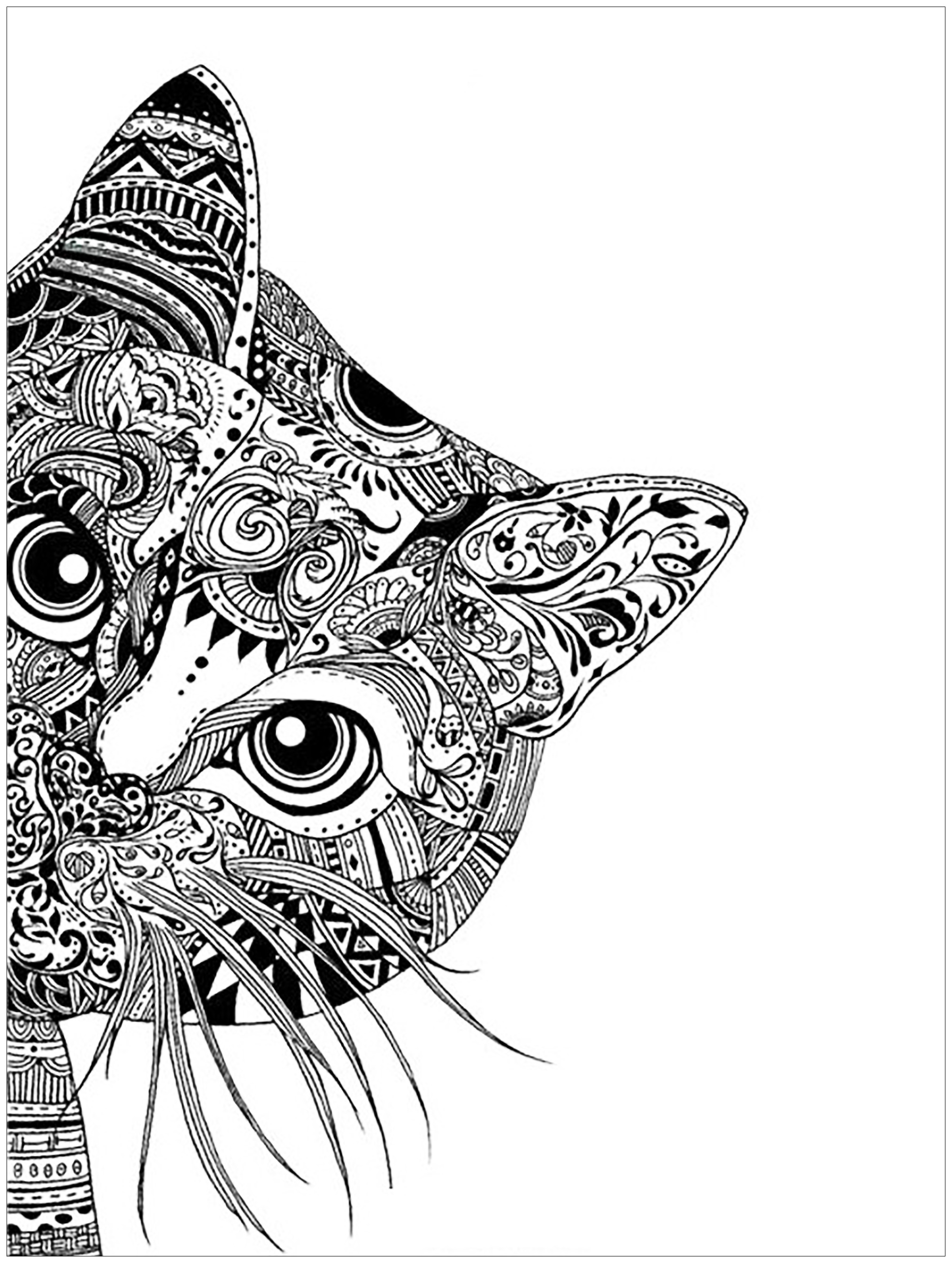 Cat Coloring Pages For Adults 50