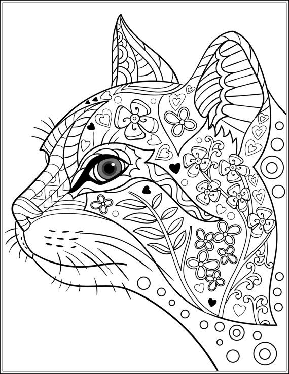 Cat Coloring Pages For Adults 56