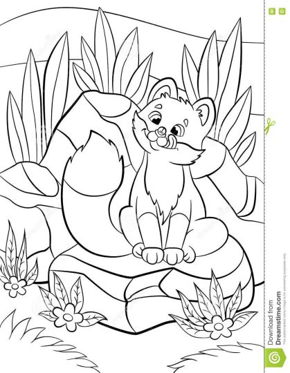 Cute Baby Fox Coloring Pages 10