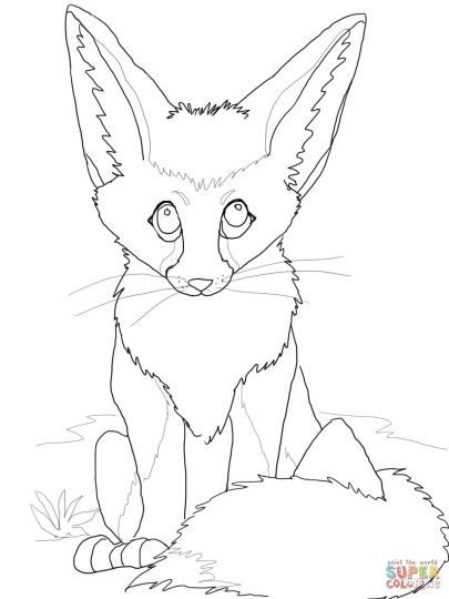 Cute Baby Fox Coloring Pages 16