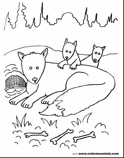 Cute Baby Fox Coloring Pages 21