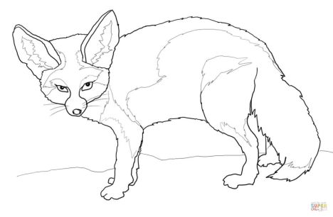 Cute Baby Fox Coloring Pages 27