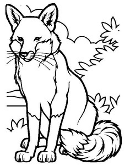 Cute Baby Fox Coloring Pages 28