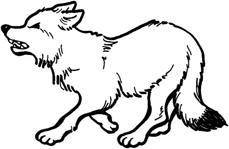 Cute Baby Fox Coloring Pages 39