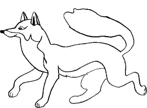 Cute Baby Fox Coloring Pages 46