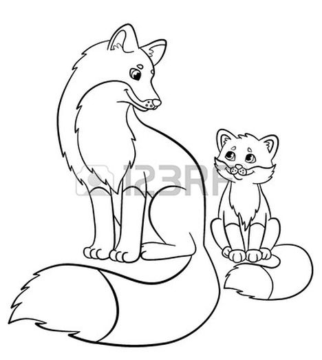 Cute Baby Fox Coloring Pages 49