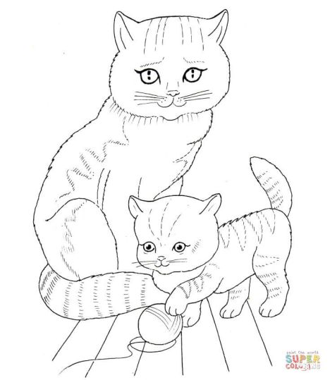 Cute Kitten Coloring Pages 1