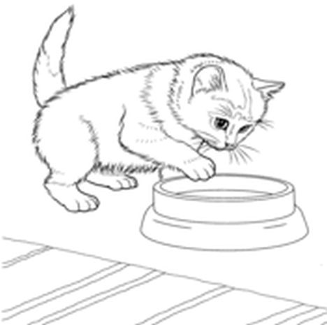 Cute Kitten Coloring Pages 25