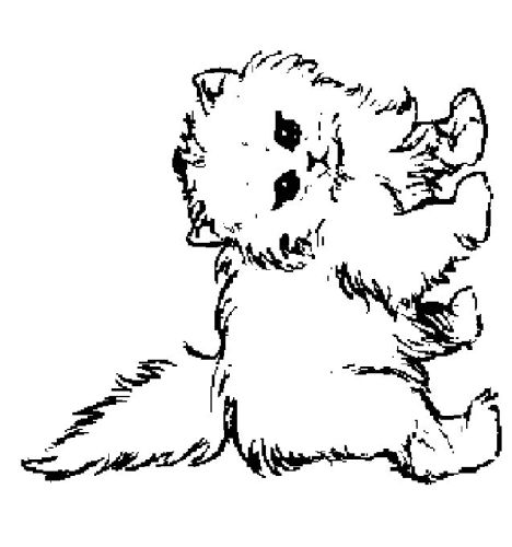 Cute Kitten Coloring Pages Part 4