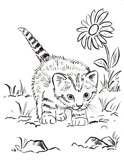 Cute Kitten Coloring Pages 56