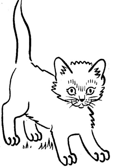Cute Kitten Coloring Pages Part 7