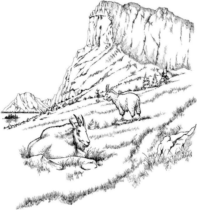 Detailed Landscape Coloring Pages For Adults 24