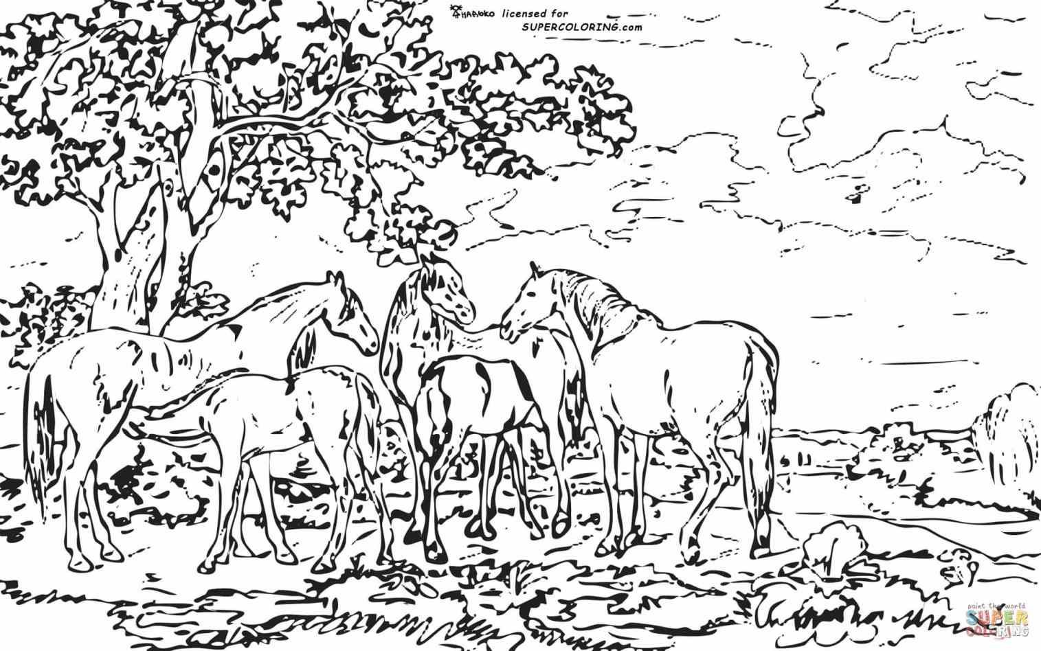 detailed landscape coloring pages for adults | Detailed Landscape Coloring Pages For Adults - Part 5