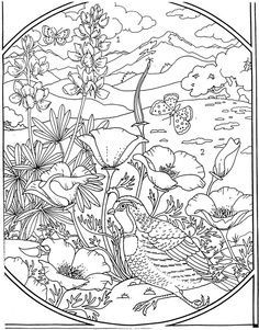 Detailed Landscape Coloring Pages For Adults 68
