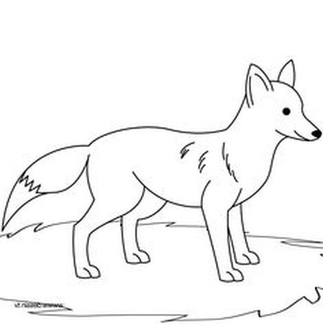 Fox Coloring Pages for Preschoolers 1