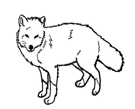 Fox Coloring Pages for Preschoolers 11
