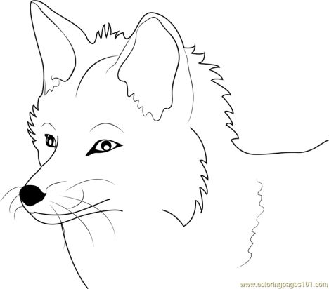 Fox Coloring Pages for Preschoolers 14