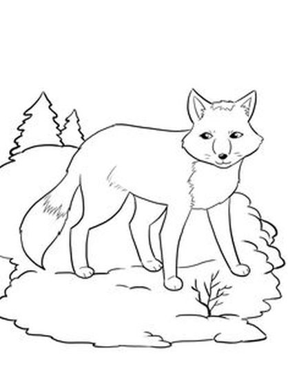 Fox Coloring Pages for Preschoolers 24