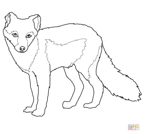Fox Coloring Pages for Preschoolers 30