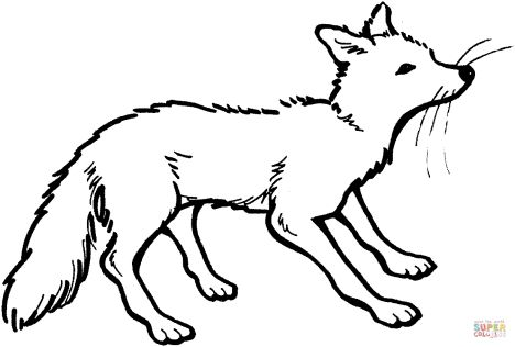 Fox Coloring Pages for Preschoolers 9