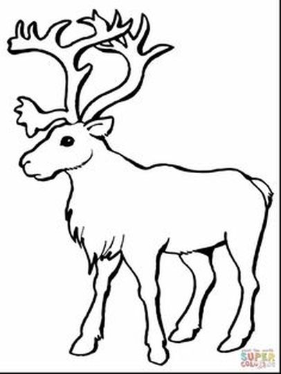 Reindeer Face Coloring Pages 17