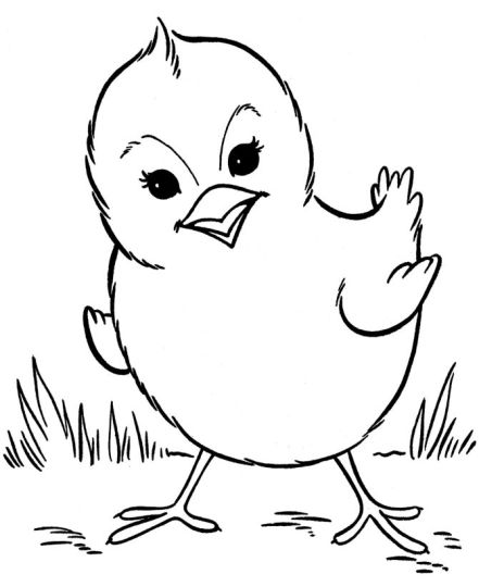 Easter Chick Coloring Pages 12