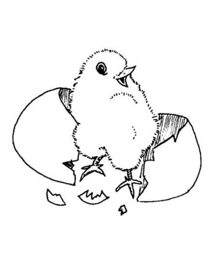 Easter Chick Coloring Pages 14