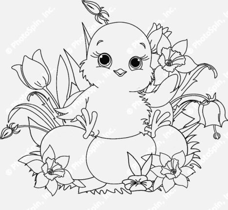 Easter Chick Coloring Pages 23