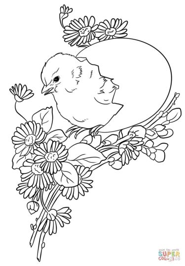 Easter Chick Coloring Pages 49