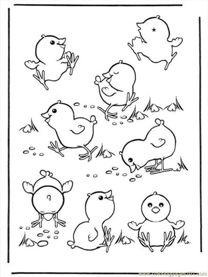 Easter Chick Coloring Pages 7