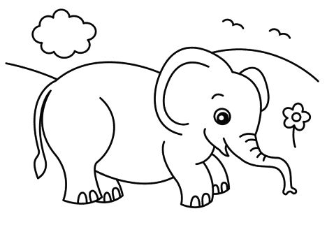Cute Baby Elephant Coloring Pages 20