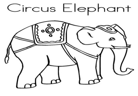 Cute Baby Elephant Coloring Pages 45