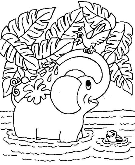Cute Baby Elephant Coloring Pages 46