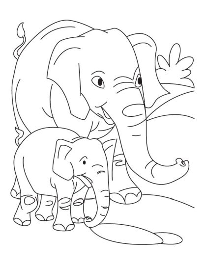 Cute Baby Elephant Coloring Pages 48