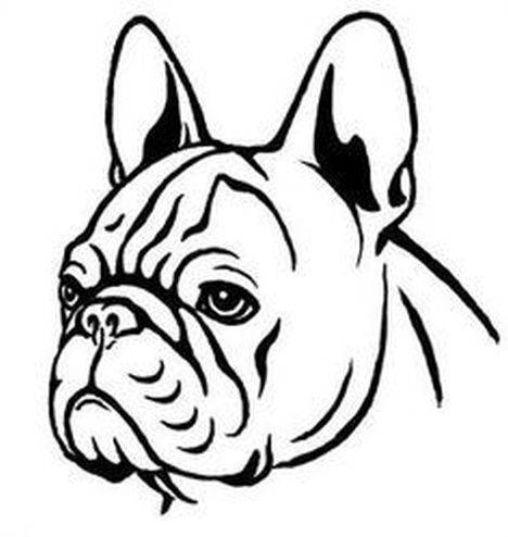 French Bulldog Coloring Pages 10