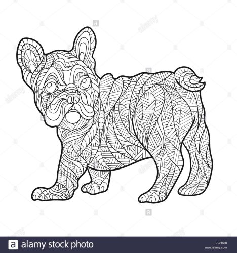 French Bulldog Coloring Pages 33