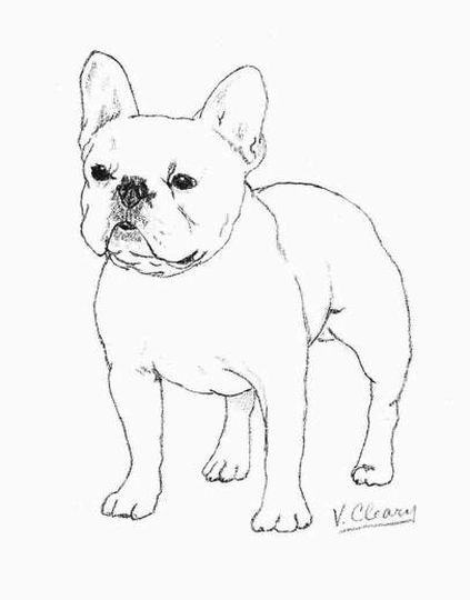 French Bulldog Coloring Pages 34