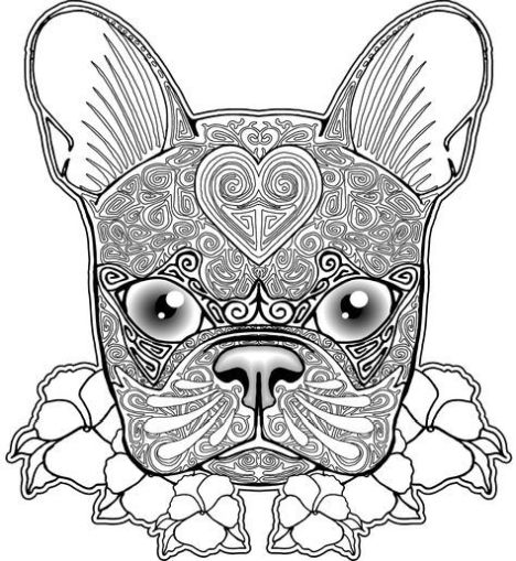French Bulldog Coloring Pages 35
