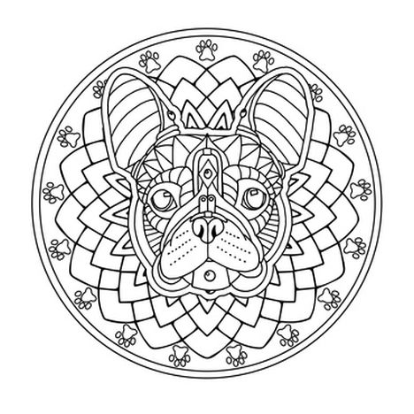 French Bulldog Coloring Pages 36