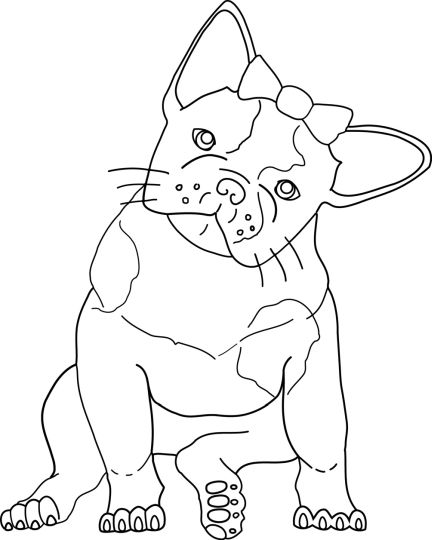 French Bulldog Coloring Pages 38