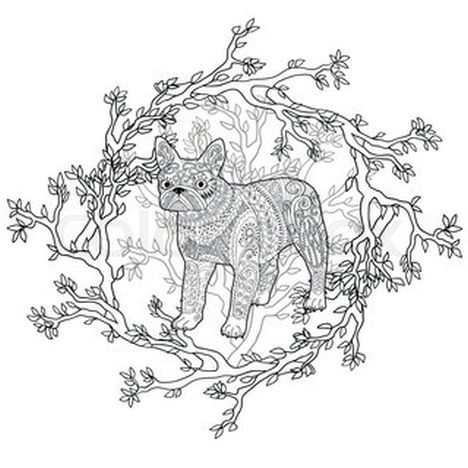 French Bulldog Coloring Pages 39