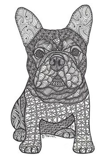 French Bulldog Coloring Pages 41