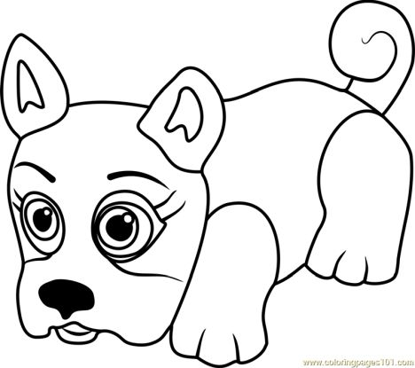 French Bulldog Coloring Pages 43