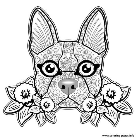 French Bulldog Coloring Pages 44