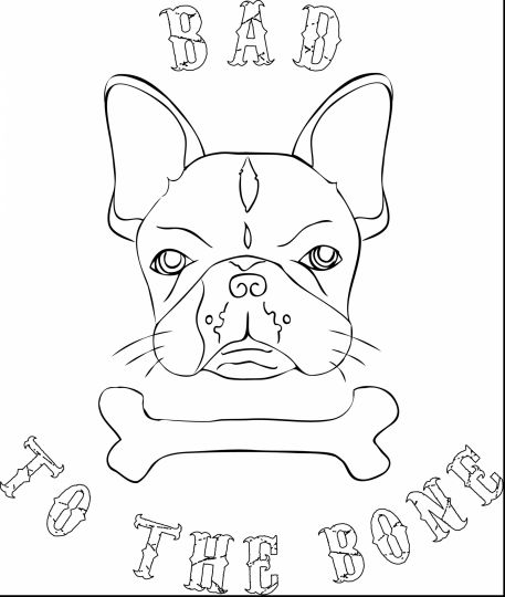 French Bulldog Coloring Pages 46